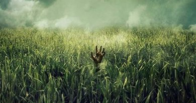 in-the-tall-grass-poster-pelicula-netflix-Sitges 2019