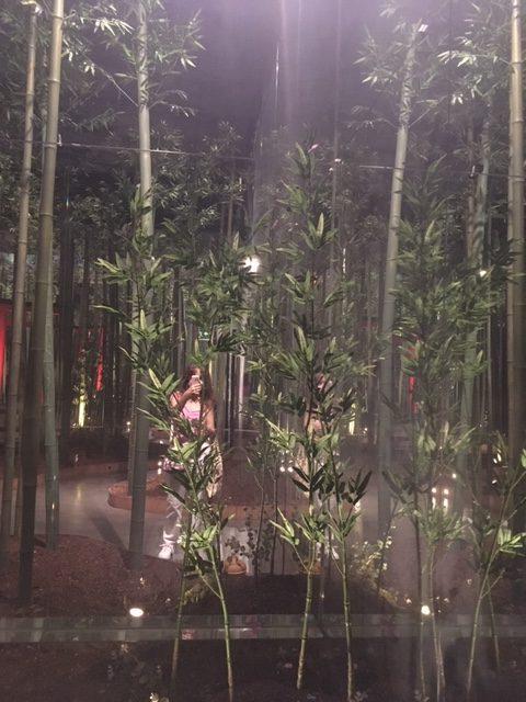 La sala del bambú en IKONO